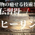 2019.9/21~ 愛媛県松山市 レイキセミナー初伝・代替医療・家庭療法・自宅療養に最適なレイキヒーリングの基本習得 直傳靈氣 前期セミナー開催させて頂きます。